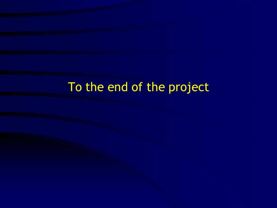 To the end of the project