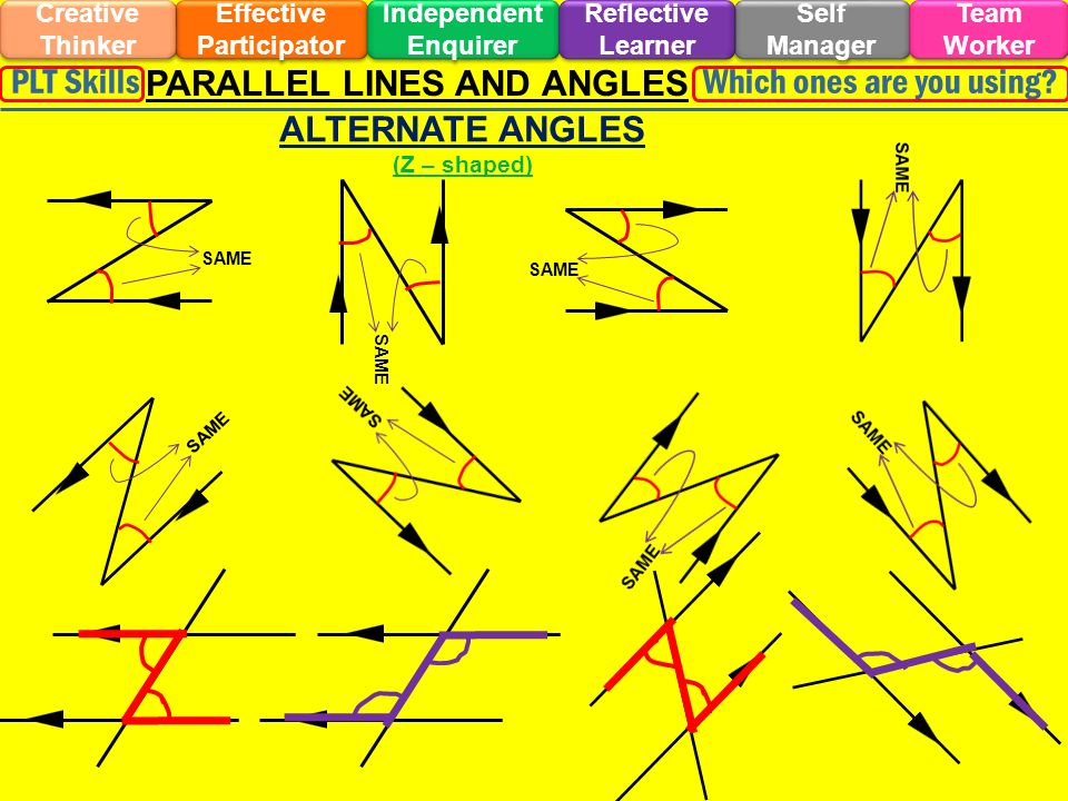 Effective Participator Self Manager Independent Enquirer Creative Thinker Team Worker Reflective Learner Which ones are you using PLT Skills PARALLEL LINES AND ANGLES SAME ALTERNATE ANGLES (Z – shaped) SAME