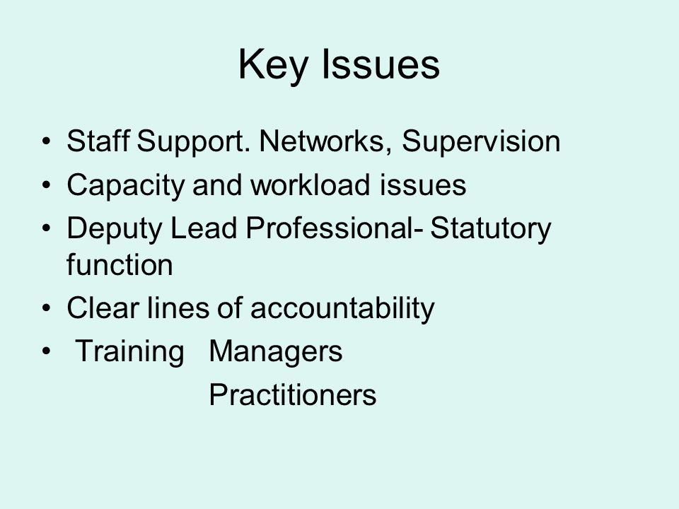 Key Issues Staff Support.