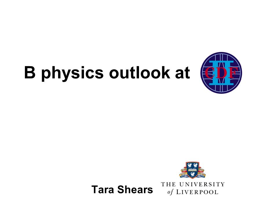 B physics outlook at Tara Shears