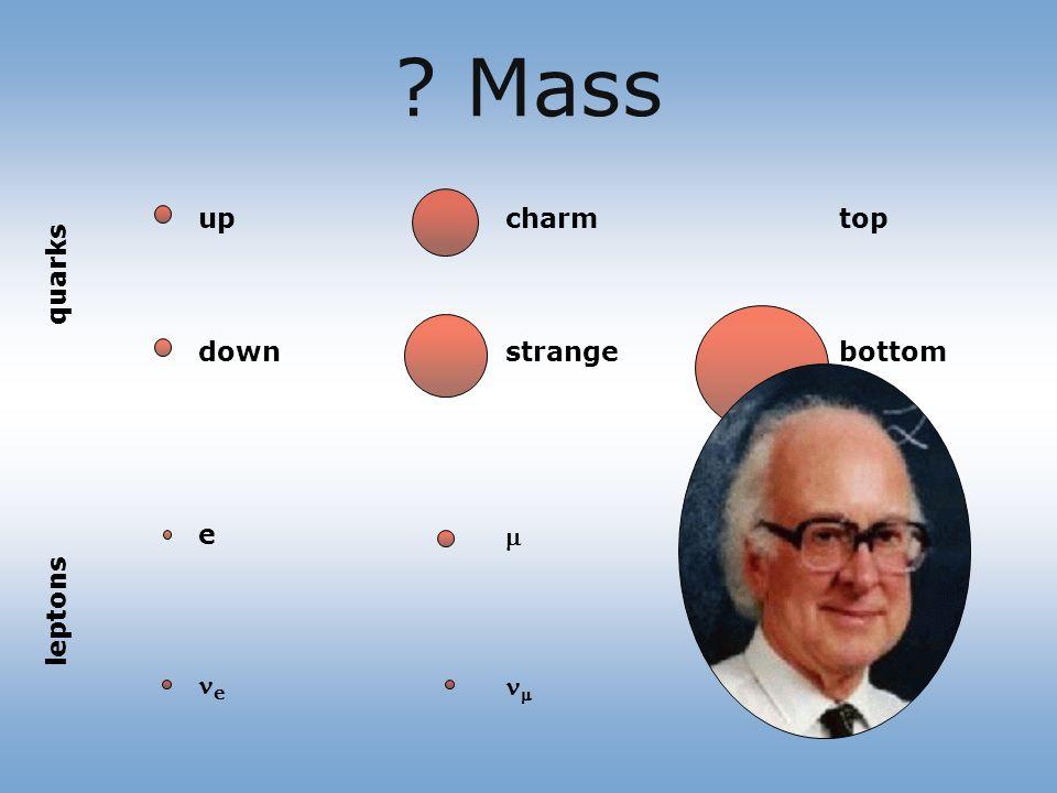 Mass up down e e charm strange top bottom quarks leptons