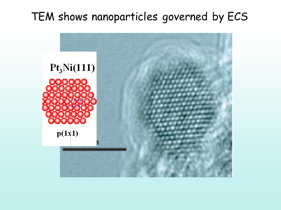TEM shows nanoparticles governed by ECS
