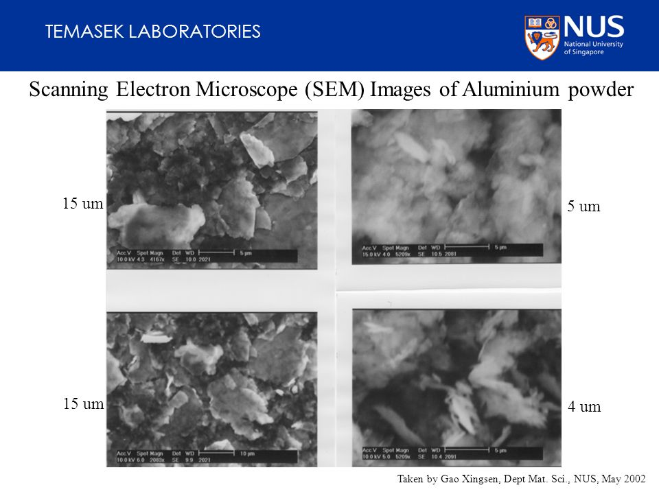 TEMASEK LABORATORIES Scanning Electron Microscope (SEM) Images of Aluminium powder 15 um 5 um 4 um Taken by Gao Xingsen, Dept Mat.