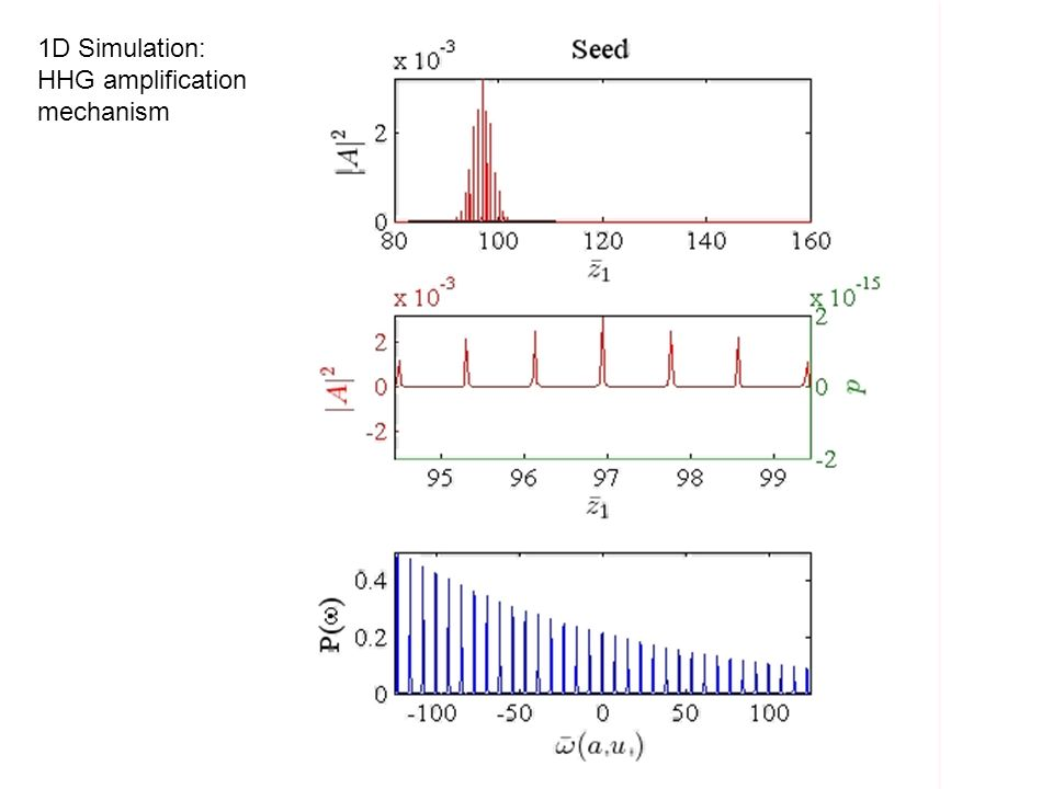 1D Simulation: HHG amplification mechanism
