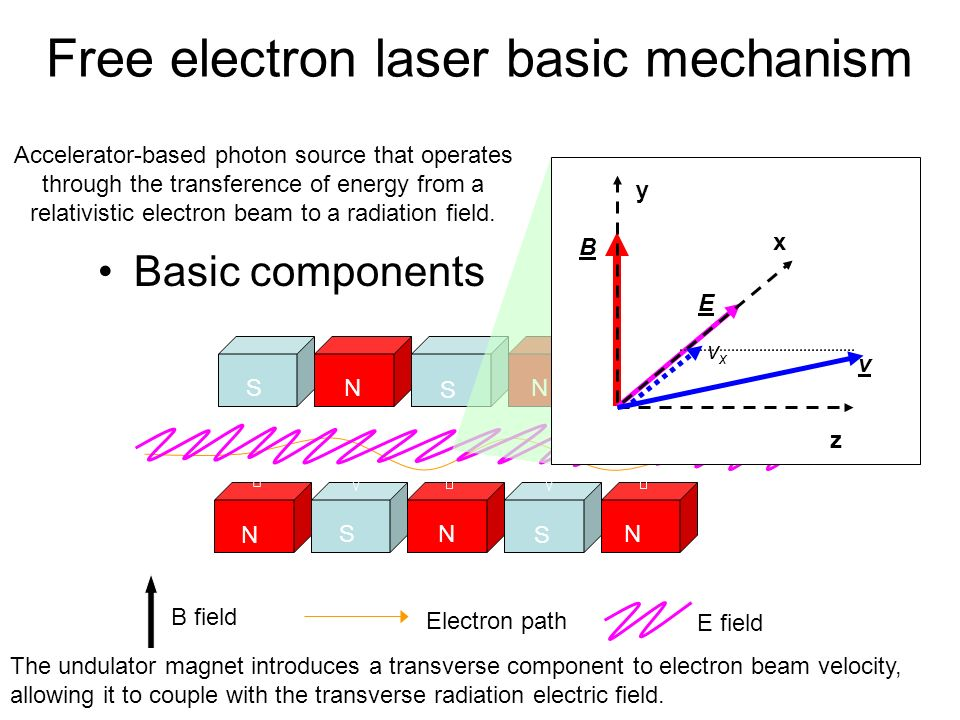 Free electron laser basic mechanism Accelerator-based photon source that operates through the transference of energy from a relativistic electron beam