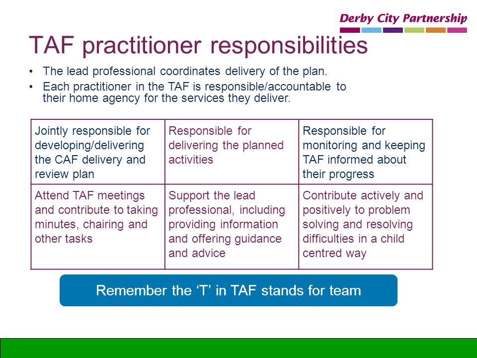 TAF practitioner responsibilities The lead professional coordinates delivery of the plan. Each practitioner in the TAF is responsible/accountable to t