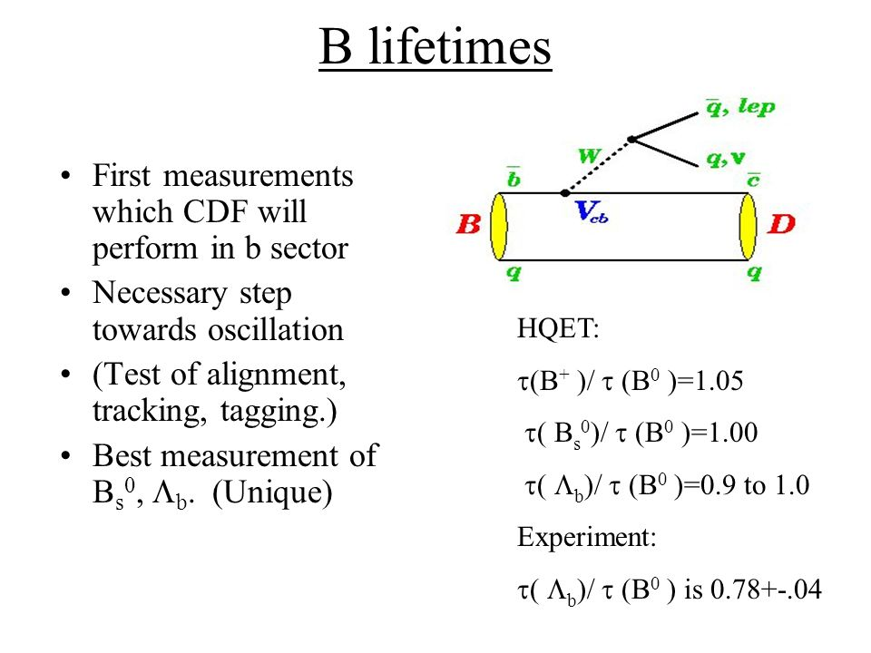 B lifetimes First measurements which CDF will perform in b sector Necessary step towards oscillation (Test of alignment, tracking, tagging.) Best measurement of B s 0, b.