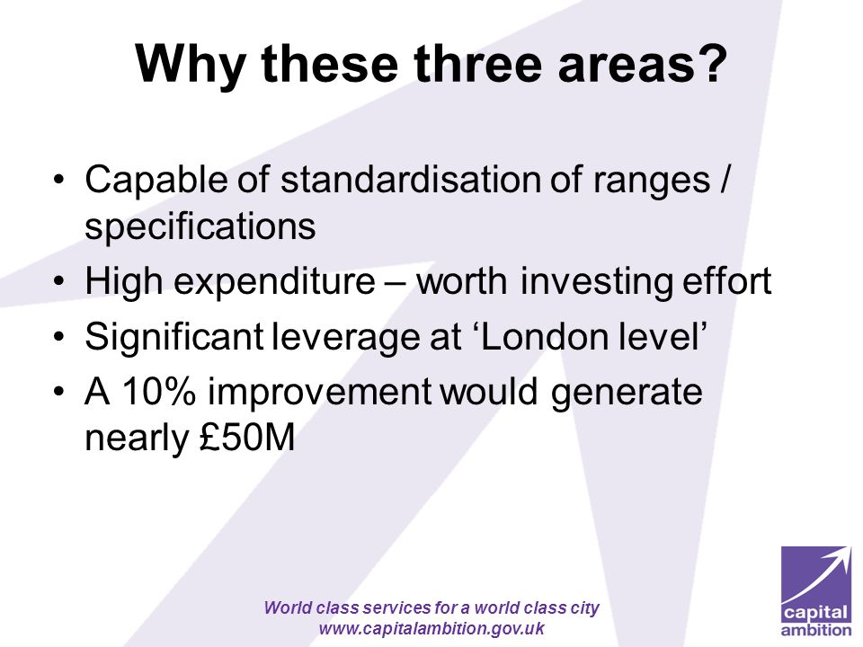 World class services for a world class city   Why these three areas.