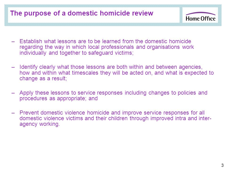 3 –Establish what lessons are to be learned from the domestic homicide regarding the way in which local professionals and organisations work individua
