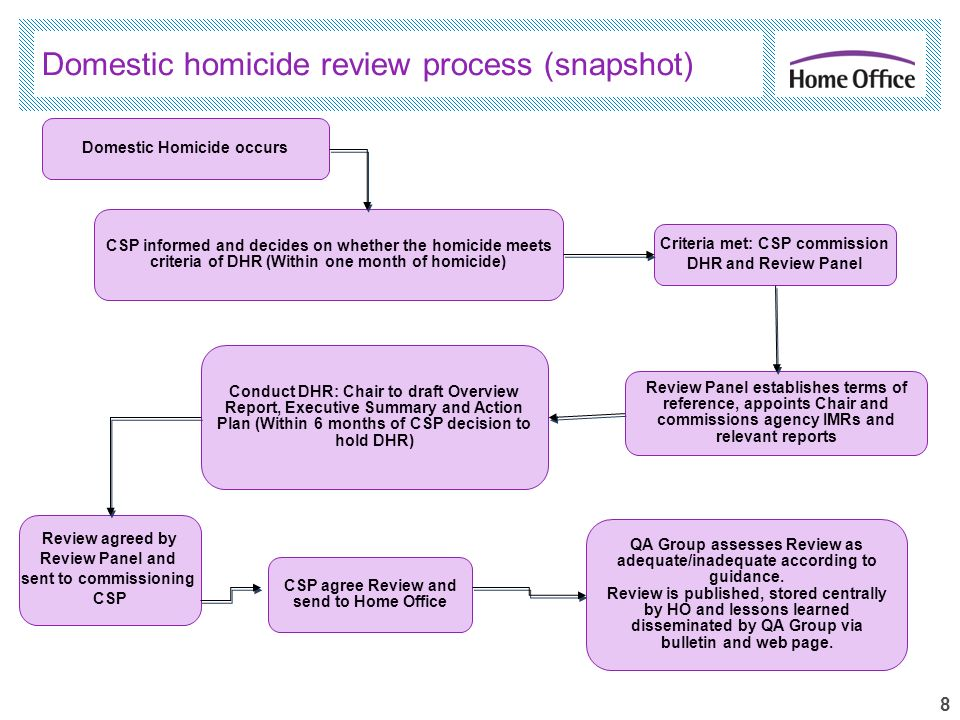 8 Domestic homicide review process (snapshot) Domestic Homicide occurs CSP informed and decides on whether the homicide meets criteria of DHR (Within