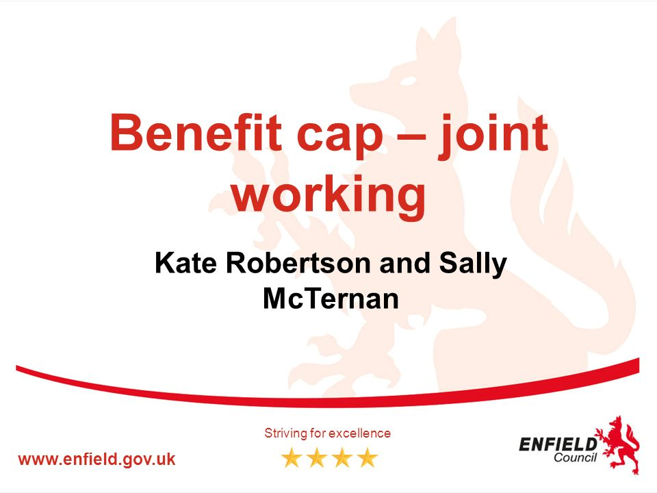 Benefit cap – joint working Kate Robertson and Sally McTernan www.enfield.gov.uk Striving for excellence