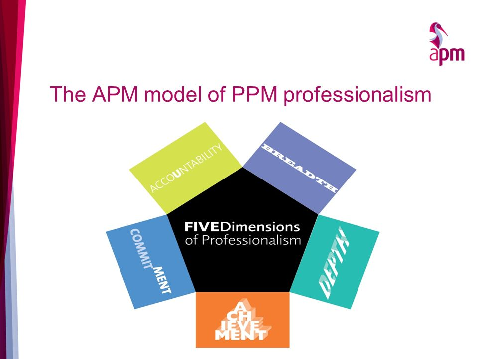 The APM model of PPM professionalism
