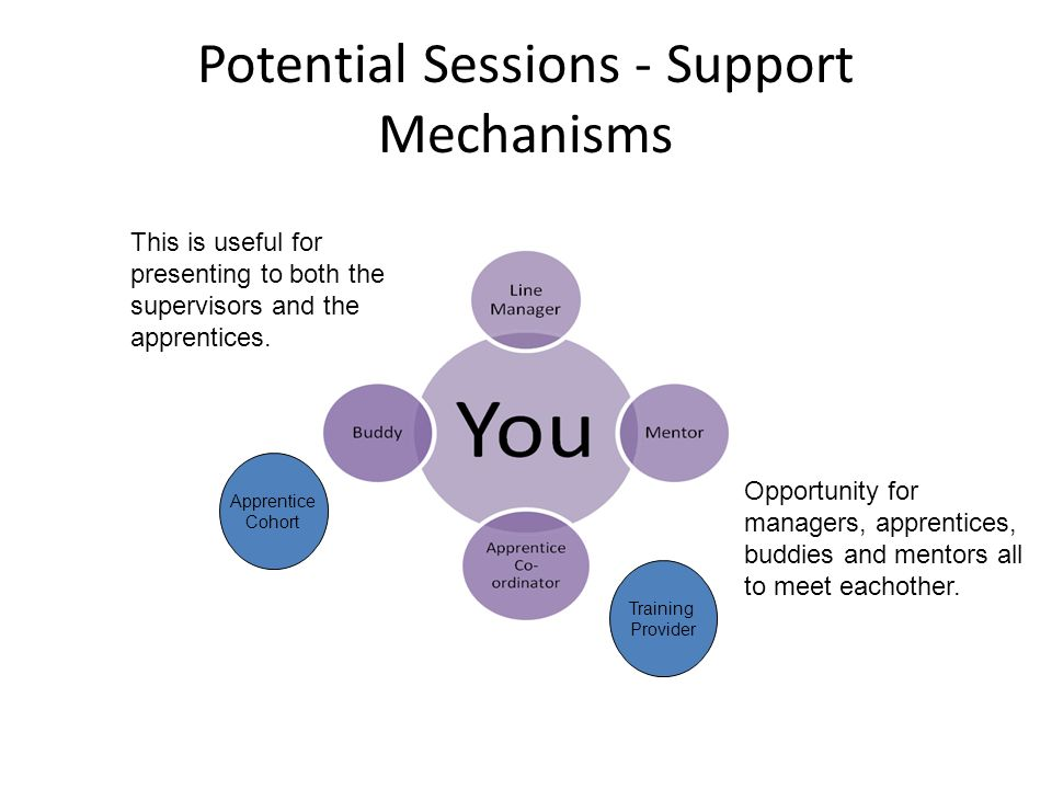MY SUPPORTS Potential Sessions - Support Mechanisms Training Provider Apprentice Cohort Opportunity for managers, apprentices, buddies and mentors all to meet eachother.