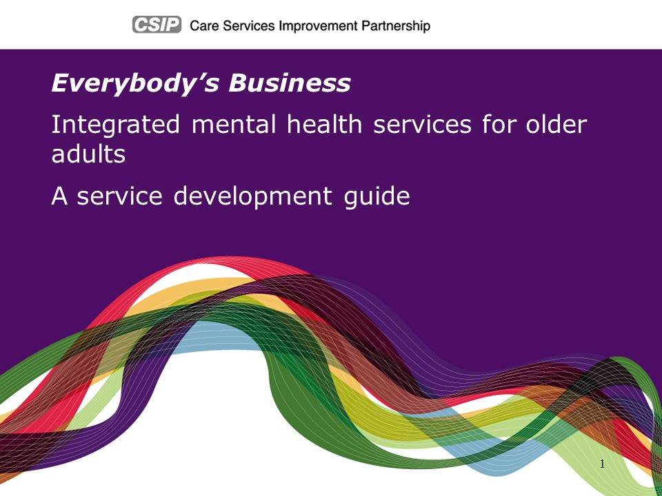 1 Everybodys Business Integrated mental health services for older adults A service development guide