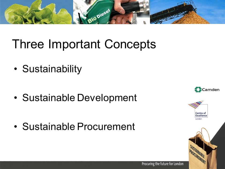 Three Important Concepts Sustainability Sustainable Development Sustainable Procurement