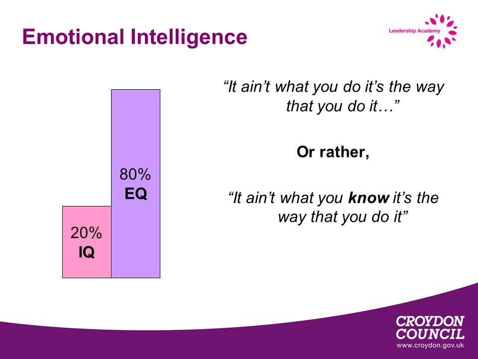 Emotional Intelligence 20% IQ 80% EQ It aint what you do its the way that you do it… Or rather, It aint what you know its the way that you do it