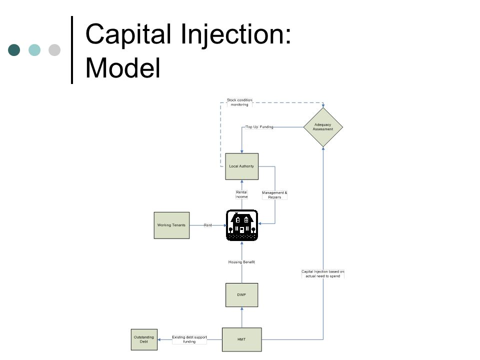 Capital Injection: Model