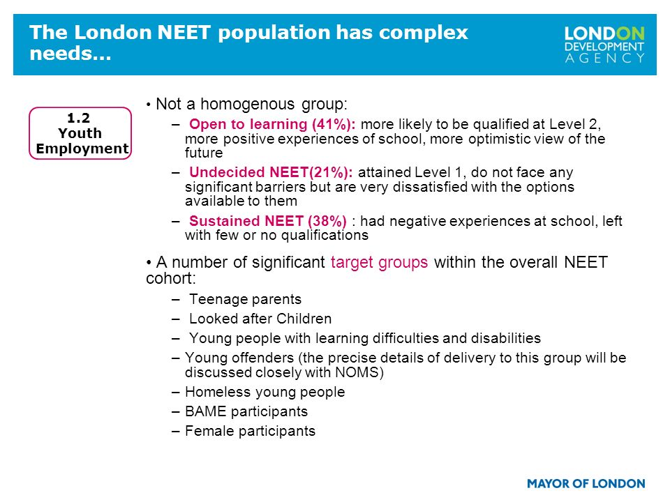 The London NEET population has complex needs… Not a homogenous group: – Open to learning (41%): more likely to be qualified at Level 2, more positive experiences of school, more optimistic view of the future – Undecided NEET(21%): attained Level 1, do not face any significant barriers but are very dissatisfied with the options available to them – Sustained NEET (38%) : had negative experiences at school, left with few or no qualifications A number of significant target groups within the overall NEET cohort: – Teenage parents – Looked after Children – Young people with learning difficulties and disabilities –Young offenders (the precise details of delivery to this group will be discussed closely with NOMS) –Homeless young people –BAME participants –Female participants 1.2 Youth Employment