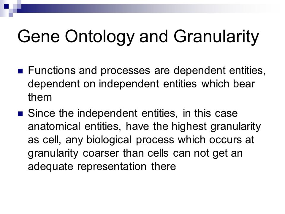 Gene Ontology and Granularity Functions and processes are dependent entities, dependent on independent entities which bear them Since the independent entities, in this case anatomical entities, have the highest granularity as cell, any biological process which occurs at granularity coarser than cells can not get an adequate representation there