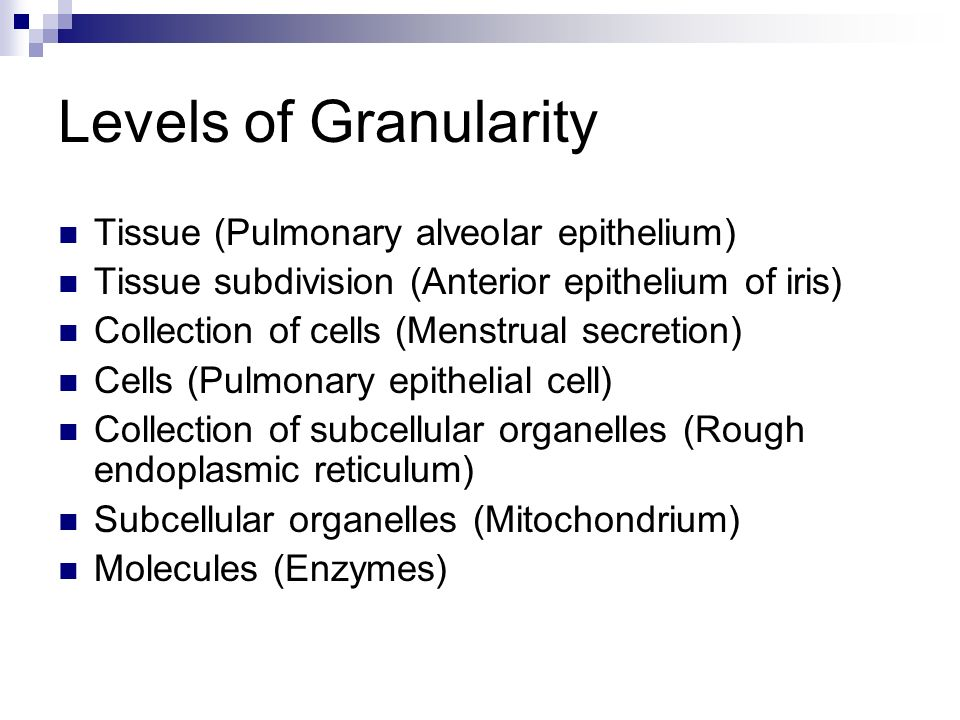 Levels of Granularity Tissue (Pulmonary alveolar epithelium) Tissue subdivision (Anterior epithelium of iris) Collection of cells (Menstrual secretion) Cells (Pulmonary epithelial cell) Collection of subcellular organelles (Rough endoplasmic reticulum) Subcellular organelles (Mitochondrium) Molecules (Enzymes)