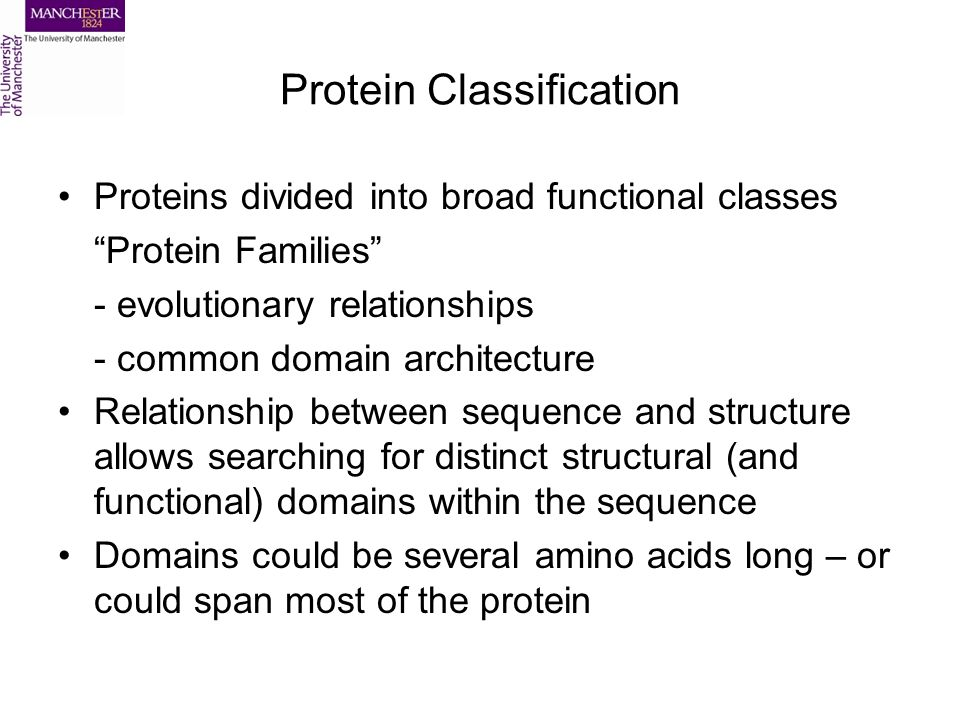 Protein Classification Proteins divided into broad functional classes Protein Families - evolutionary relationships - common domain architecture Relationship between sequence and structure allows searching for distinct structural (and functional) domains within the sequence Domains could be several amino acids long – or could span most of the protein