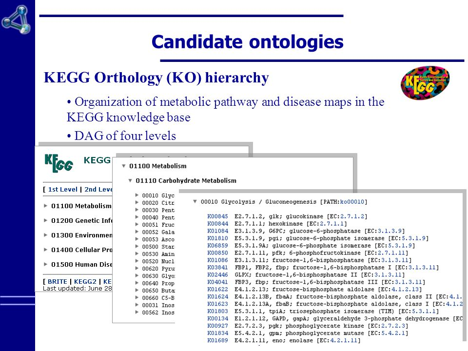 EA 3888 – University of Rennes 1 Candidate ontologies KEGG Orthology (KO) hierarchy Organization of metabolic pathway and disease maps in the KEGG knowledge base DAG of four levels