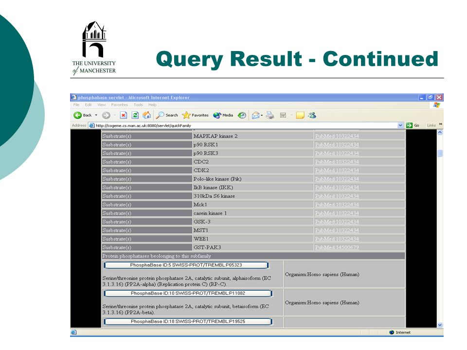 Query Result - Continued