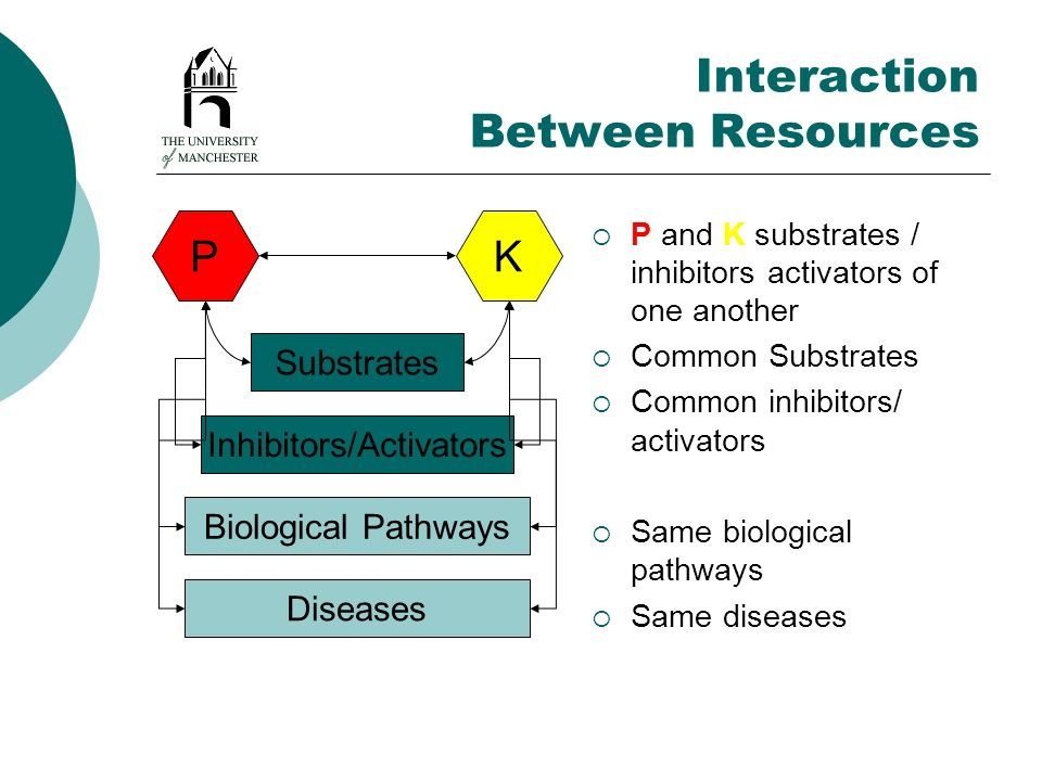 Interaction Between Resources P and K substrates / inhibitors activators of one another Common Substrates Common inhibitors/ activators Same biologica