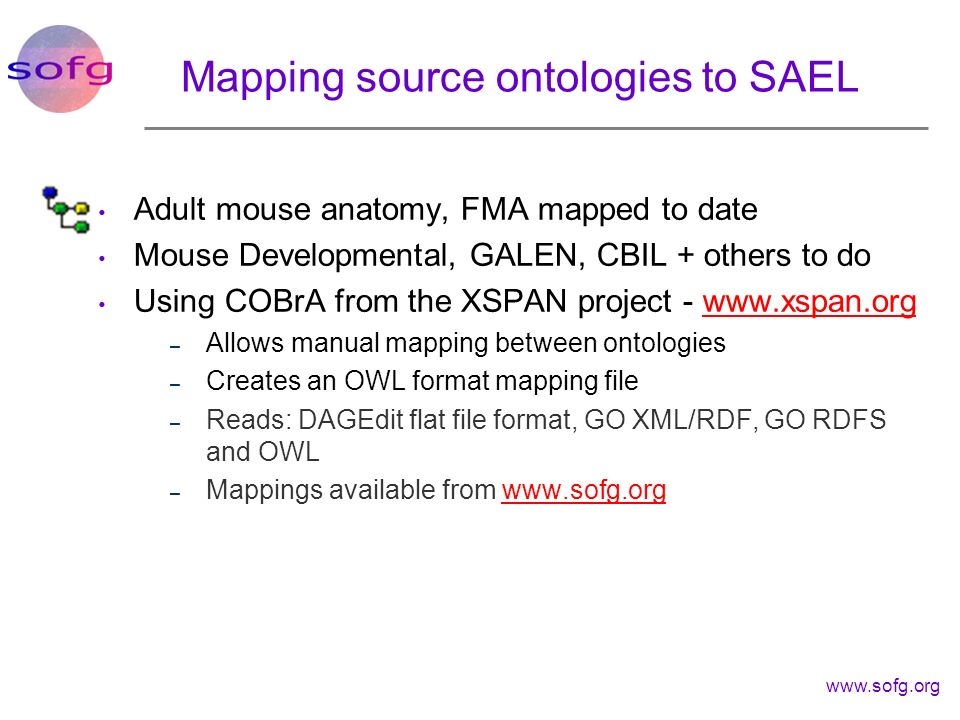www.sofg.org Mapping source ontologies to SAEL Adult mouse anatomy, FMA mapped to date Mouse Developmental, GALEN, CBIL + others to do Using COBrA fro