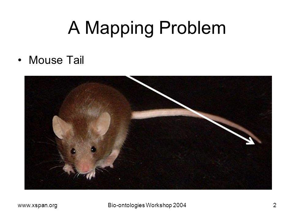Workshop A Mapping Problem Mouse Tail