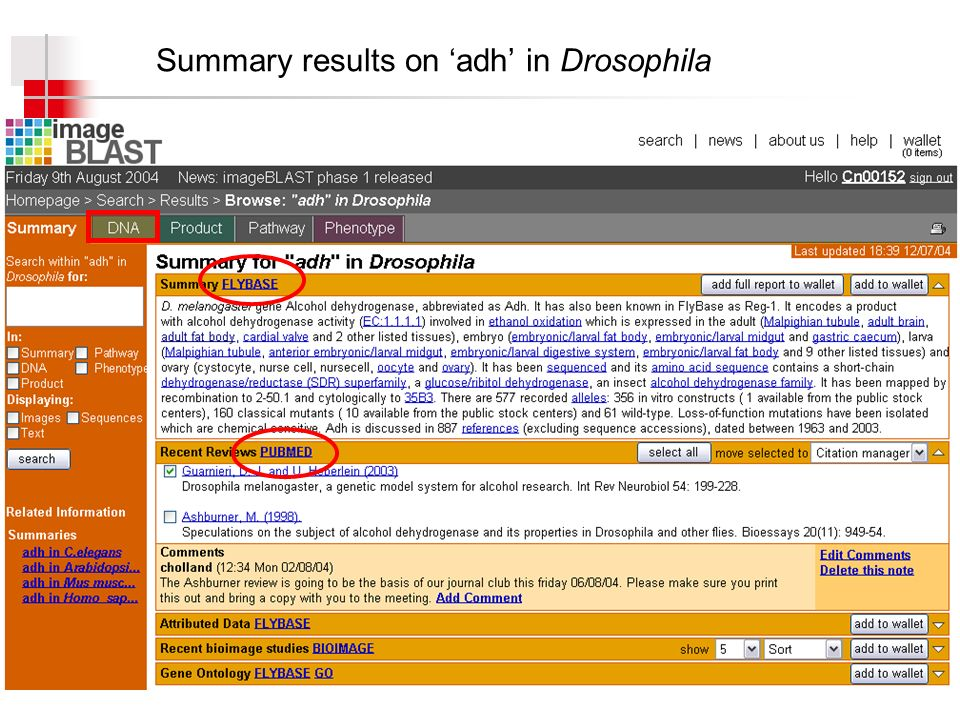 Summary results on adh in Drosophila