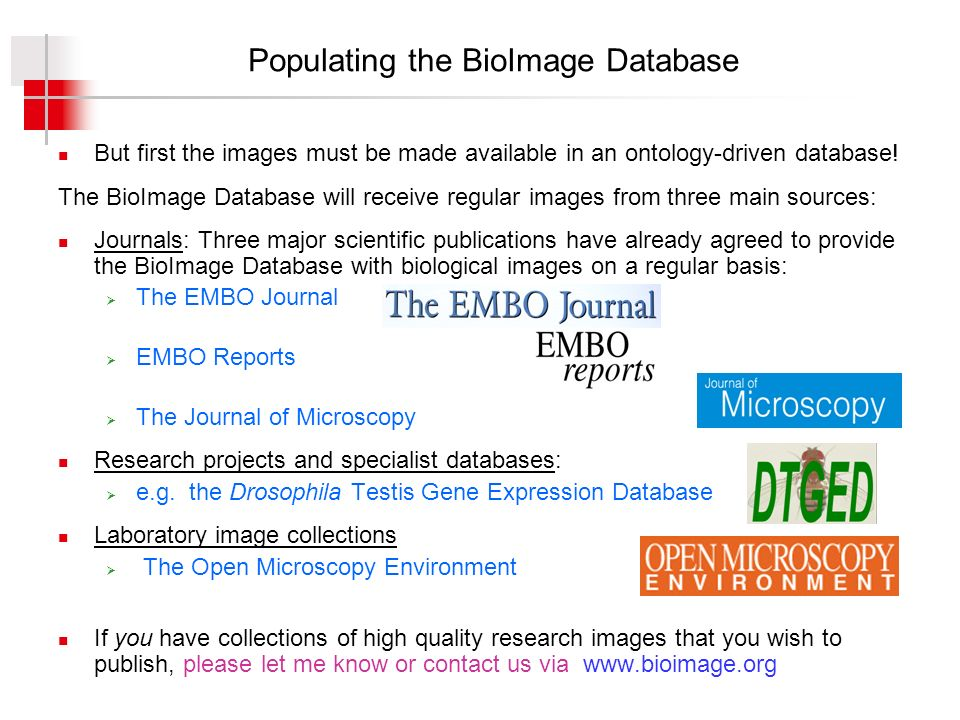 Populating the BioImage Database But first the images must be made available in an ontology-driven database.