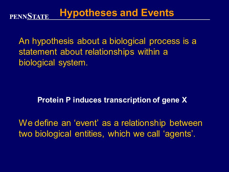 PENN S TATE Hypotheses and Events An hypothesis about a biological process is a statement about relationships within a biological system.