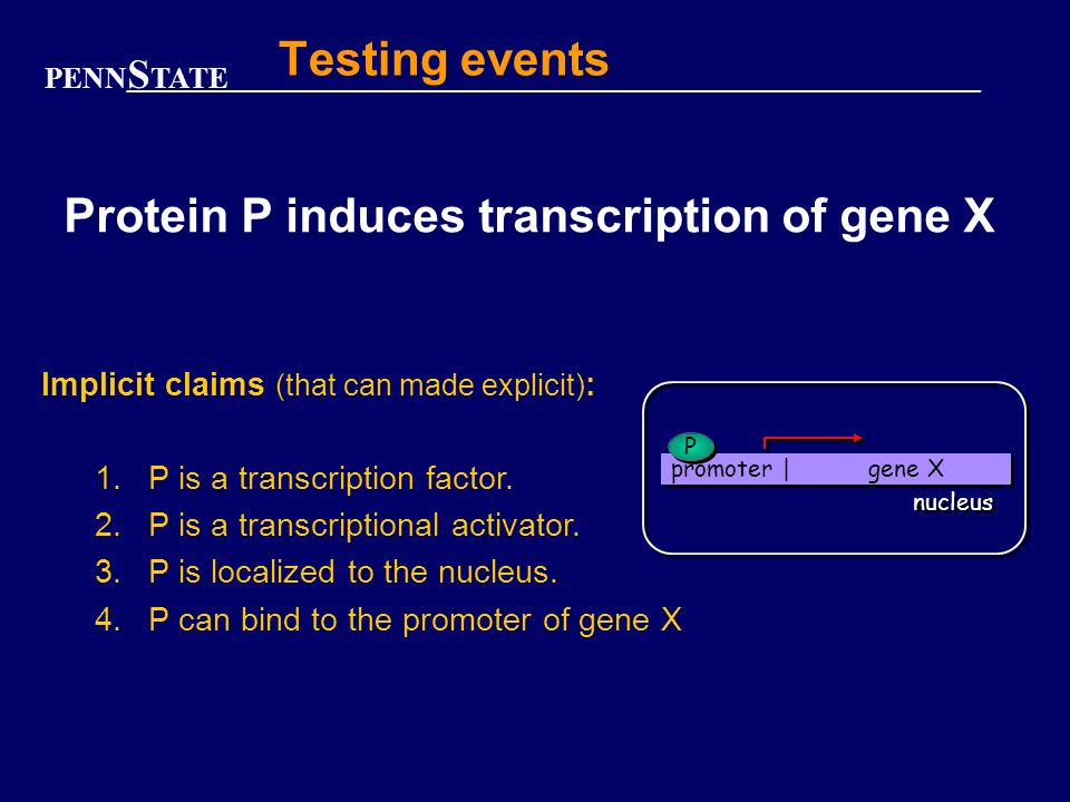 PENN S TATE Testing events Protein P induces transcription of gene X promoter | gene X nucleus P P Implicit claims (that can made explicit) : 1.P is a transcription factor.