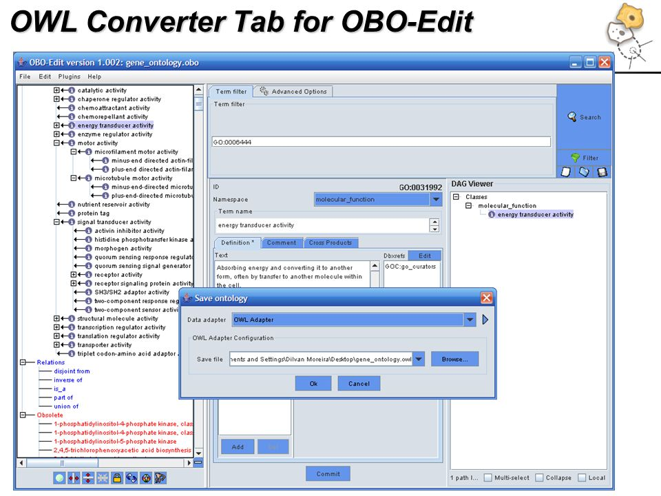 OWL Converter Tab for OBO-Edit