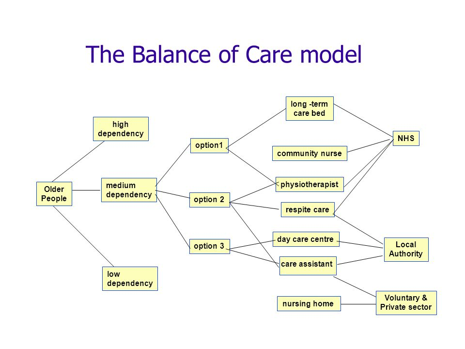 The Balance of Care model Older People high dependency low dependency medium dependency long -term care bed community nurse Voluntary & Private sector NHS Local Authority nursing home physiotherapist care assistant day care centre respite care option1 option 2 option 3