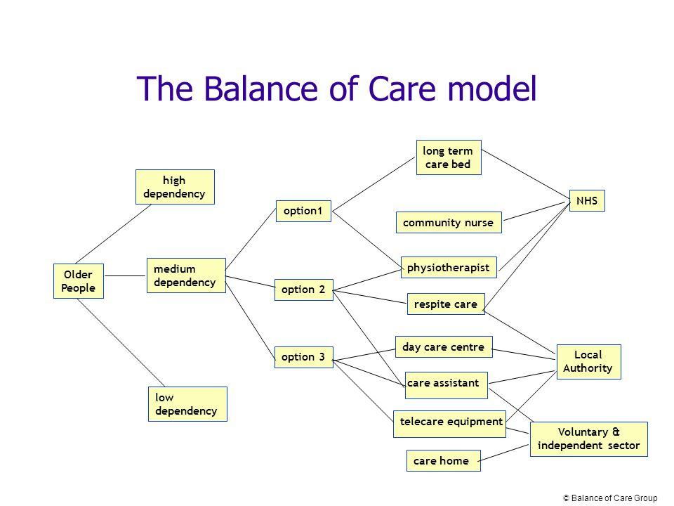 Older People high dependency low dependency medium dependency long term care bed community nurse Voluntary & independent sector NHS Local Authority care home physiotherapist care assistant day care centre respite care option1 option 2 option 3 The Balance of Care model telecare equipment © Balance of Care Group