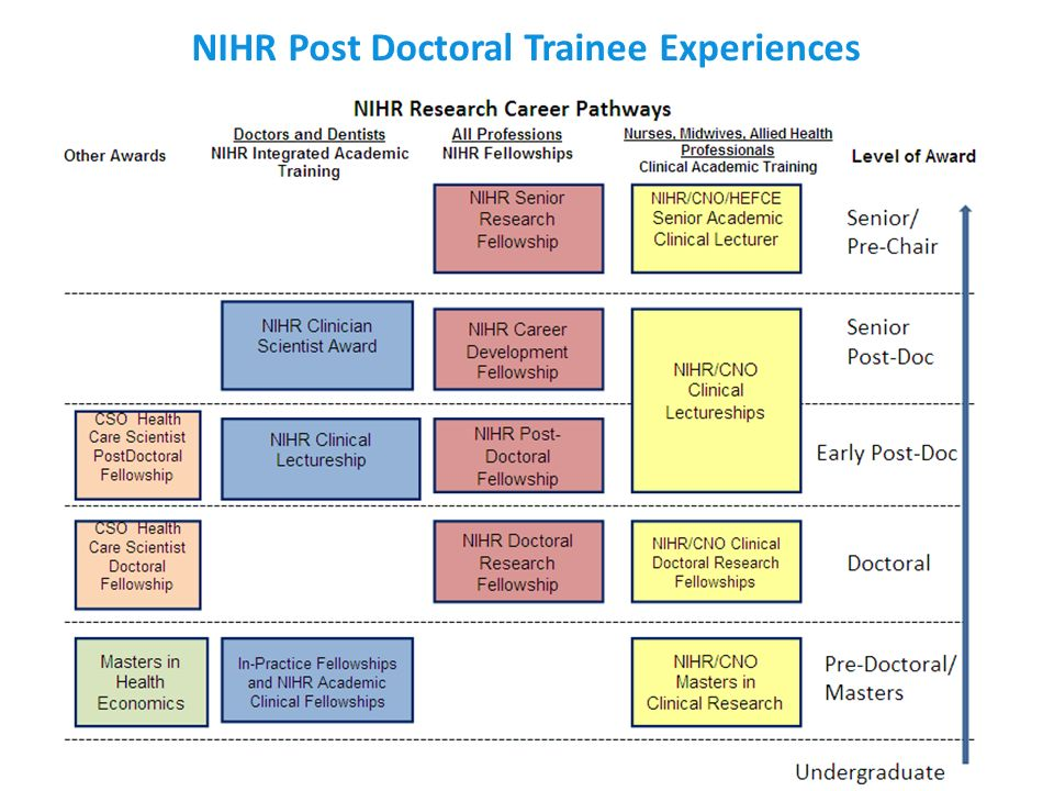 NIHR Post Doctoral Trainee Experiences