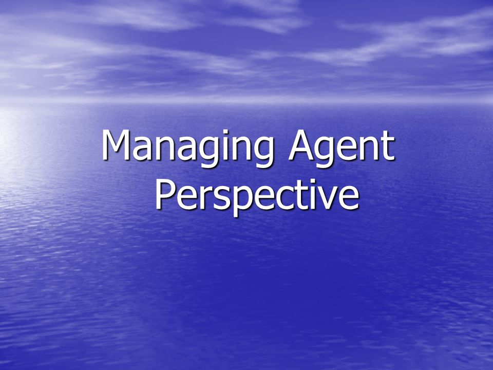 Managing Agent Perspective