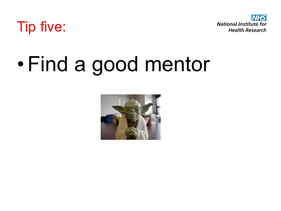 Tip five: Find a good mentor