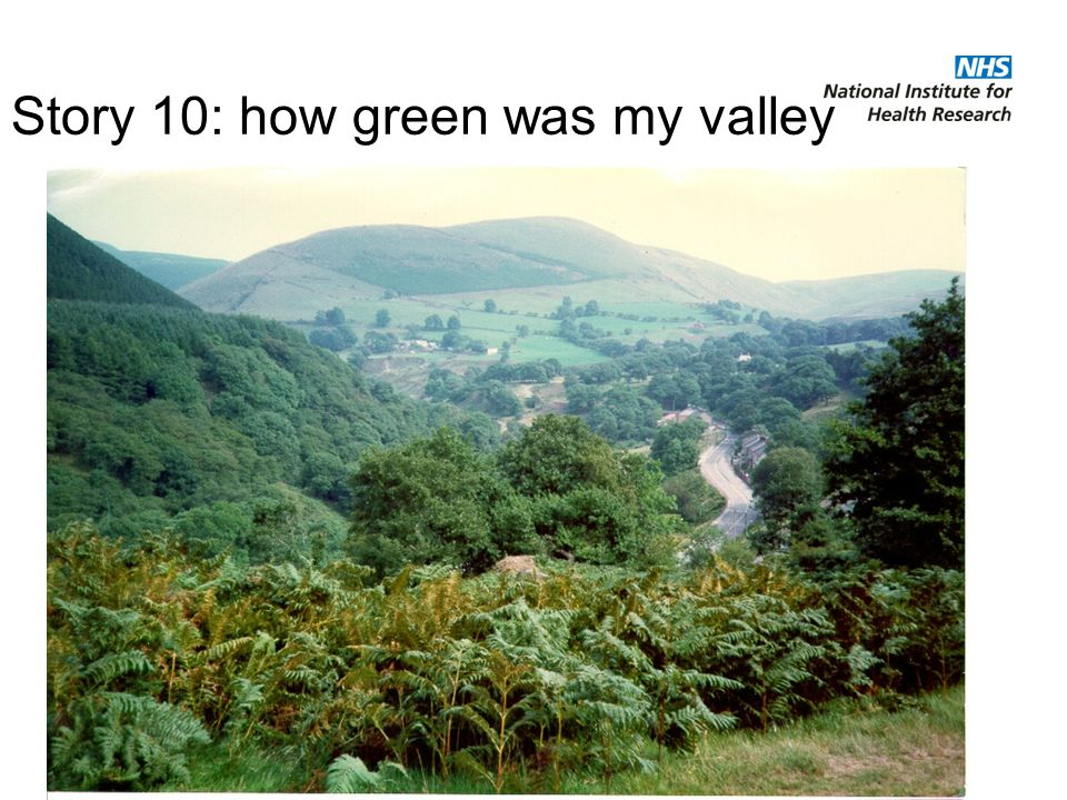 Story 10: how green was my valley