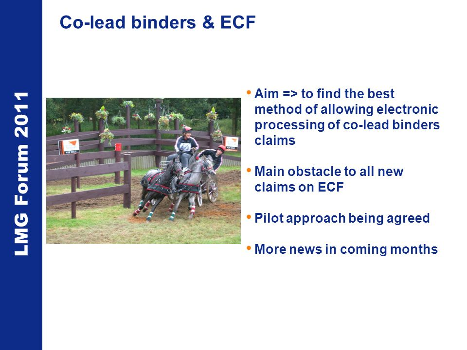 LMG Forum 2011 Co-lead binders & ECF Aim => to find the best method of allowing electronic processing of co-lead binders claims Main obstacle to all new claims on ECF Pilot approach being agreed More news in coming months