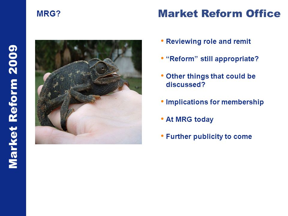 Market Reform 2009 Market Reform Office MRG? Reviewing role and remit Reform still appropriate? Other things that could be discussed? Implications for