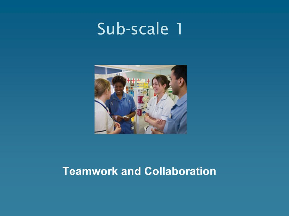 Teamwork and Collaboration Sub-scale 1