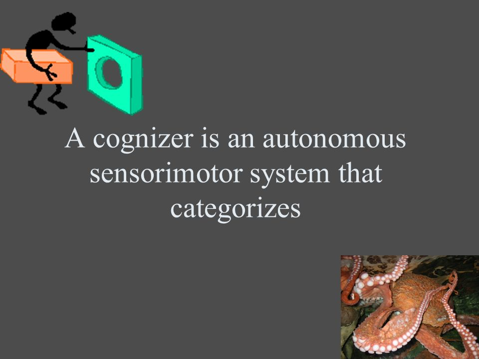 A cognizer is an autonomous sensorimotor system that categorizes