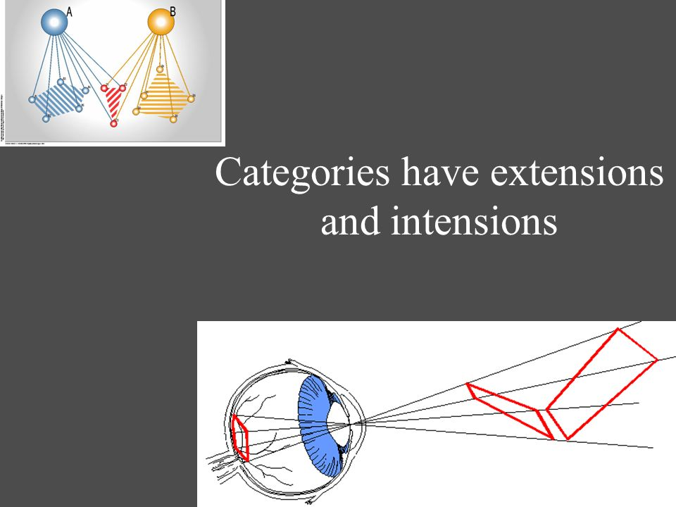Categories have extensions and intensions