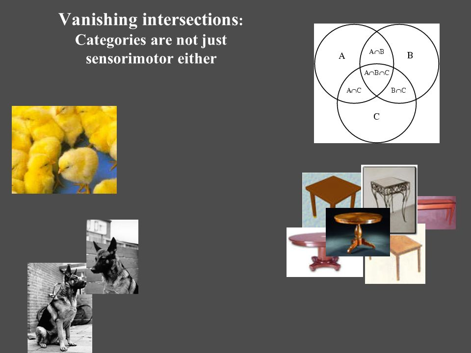Vanishing intersections : Categories are not just sensorimotor either