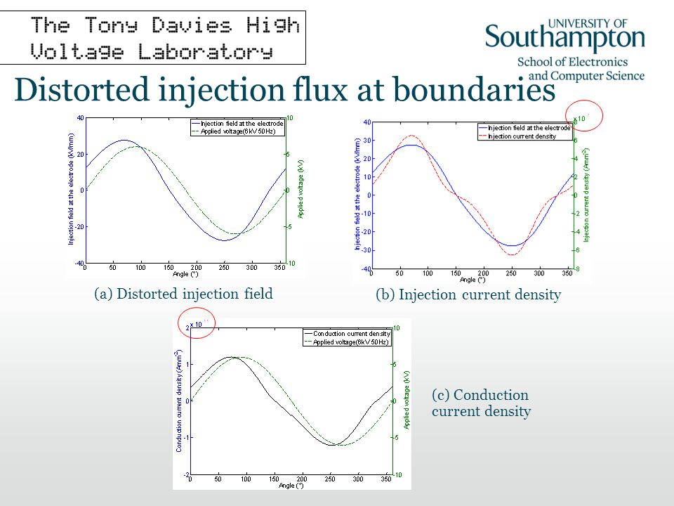 Distorted injection flux at boundaries (a) Distorted injection field (b) Injection current density (c) Conduction current density