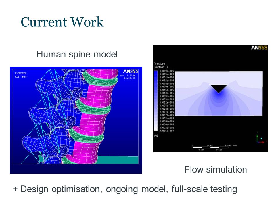 Current Work Human spine model Flow simulation + Design optimisation, ongoing model, full-scale testing