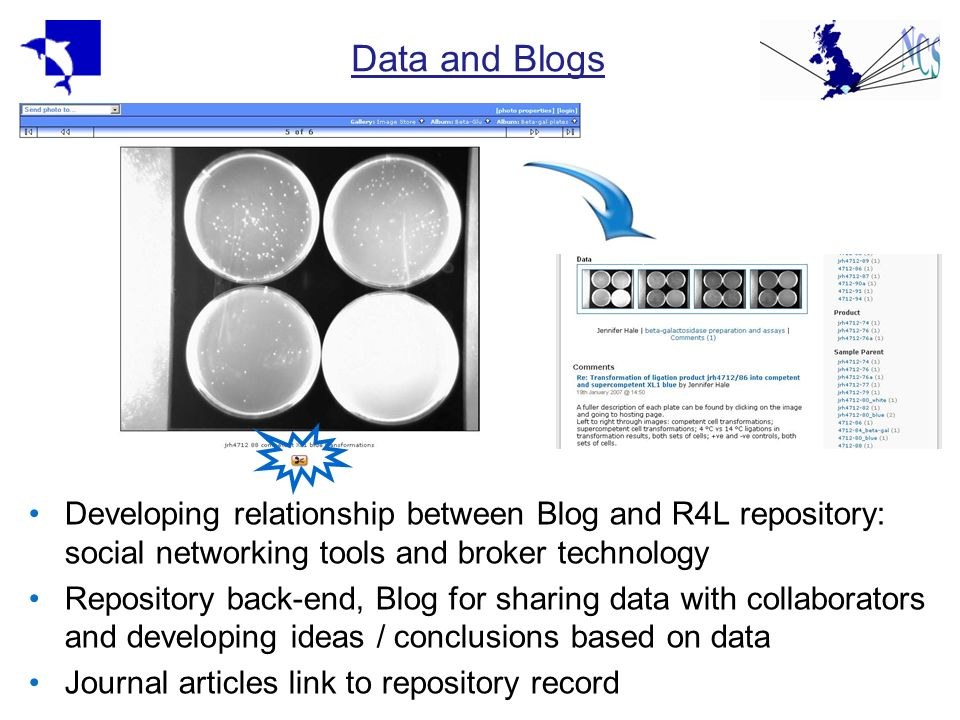 Data and Blogs Developing relationship between Blog and R4L repository: social networking tools and broker technology Repository back-end, Blog for sharing data with collaborators and developing ideas / conclusions based on data Journal articles link to repository record